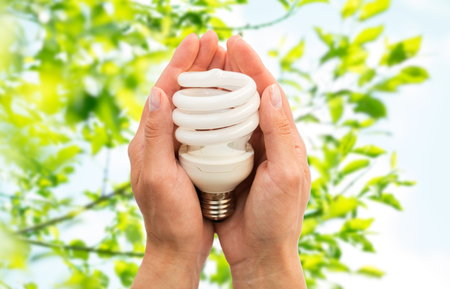 natural energy: recycling, electricity, environment and ecology concept - close up of hands holding energy saving lightbulb or lamp over green natural background