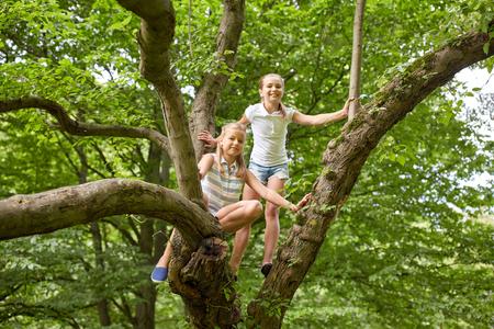 L'amicizia, l'infanzia, il tempo libero e la gente concetto - due ragazze felice arrampicata su albero e divertirsi nel parco di estate Archivio Fotografico - 64237550
