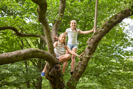 La amistad, la infancia, el ocio y el concepto de la gente - dos niñas felices subiendo por el árbol y que se divierte en el parque de verano Foto de archivo - 64237550