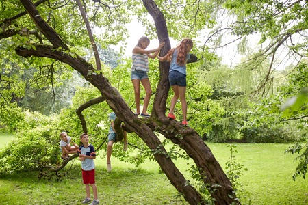 friendship, childhood, leisure and people concept - group of happy kids or friends climbing up tree and having fun in summer park Archivio Fotografico