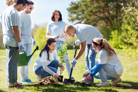 volunteering, charity, people and ecology concept - group of happy volunteers planting tree and digging hole with shovel in park Stockfoto