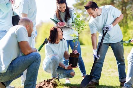 자원 봉사, 자선, 사람들 및 생태 개념 - 트리에서 심기 및 공원에서 삽으로 구멍을 파는 행복 한 자원 봉사자의 그룹