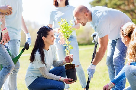 welfare plant: volunteering, charity, people and ecology concept - group of happy volunteers planting tree and digging hole with shovel in park Stock Photo