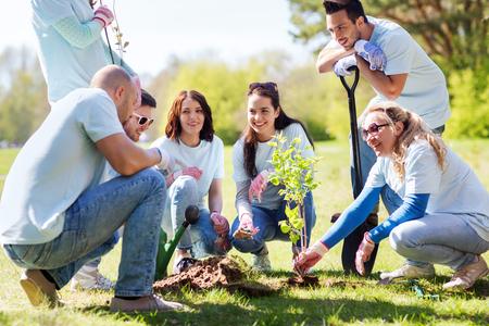 selfless: volunteering, charity, people and ecology concept - group of happy volunteers planting treel in park