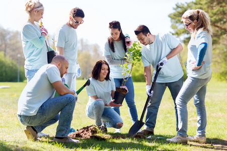community garden: volunteering, charity, people and ecology concept - group of happy volunteers planting tree and digging hole with shovel in park Stock Photo