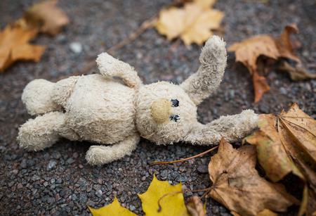 soledad: temporada, la infancia y el concepto de la soledad - conejo de juguete solitario y las hojas de otoño en la carretera o el suelo