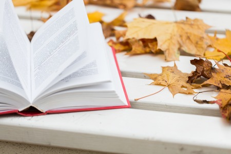 prose: season, education and literature concept - open book and autumn leaves on park bench