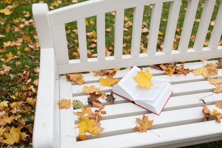 prose: season, education and literature concept - open book on bench in autumn park Stock Photo