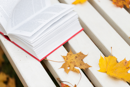 book pages: season, education and literature concept - open book and autumn leaves on park bench