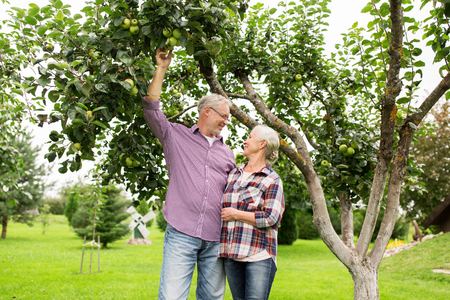 tree farming: farming, gardening, harvesting and people concept - senior couple with apple tree at summer garden Stock Photo