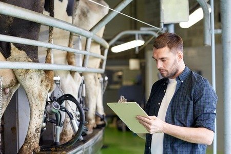 parlor: man with clipboard and milking cows on dairy farm
