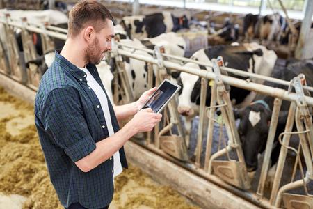 タブレット pc および酪農場で牛と若い男 写真素材 - 69496360