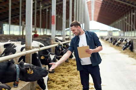 agriculture industry, farming, people and animal husbandry concept - happy smiling young man or farmer with clipboard and cows in cowshed on dairy farm Stockfoto