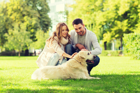 Glückliches Paar mit Labrador-Hund in der Stadt zu Fuß Standard-Bild - 71024084