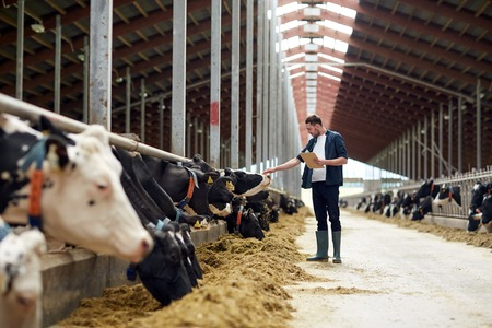 farmer with clipboard and cows in cowshed on farm Stok Fotoğraf - 71674988