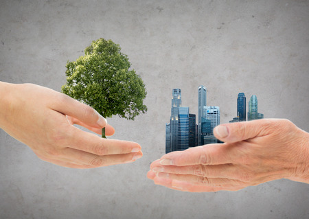 hands holding green oak tree and city buildings
