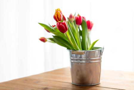 close up of tulip flowers Banco de Imagens