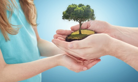 legacy: earth day, environment, people, charity and family concept - close up of father and girl hands holding green oak tree over blue background Stock Photo