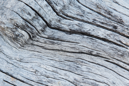 backgrounds and texture concept - close up of old weathered wooden board Imagens
