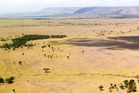 nature, landscape, environment and wildlife concept - view to maasai mara national reserve savannah at africa