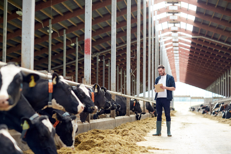 agriculture industry, farming, people and animal husbandry concept - happy smiling young man or farmer with clipboard and cows in cowshed on dairy farm Фото со стока - 78233953