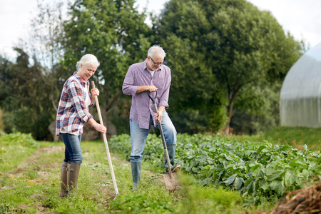 farming, gardening, agriculture and people concept - senior couple with shovels at garden or farm Stock Photo