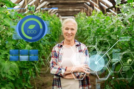 organic farming, gardening, agriculture and people concept - happy senior woman at farm greenhouse