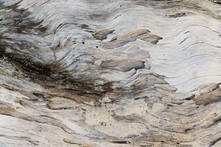old weathered wooden surface Stock Photo