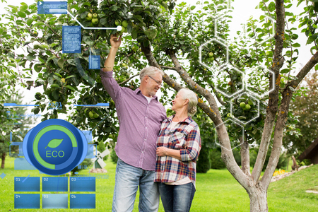 tree farming: organic farming, agriculture and people concept - happy senior couple with apple tree at summer garden