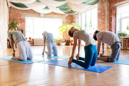 group of people doing camel pose at yoga studio Stock Photo