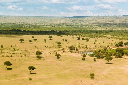 maasai mara: maasai mara national reserve savanna at africa