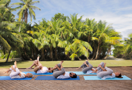 tree position: group of people making yoga exercises outdoors Stock Photo