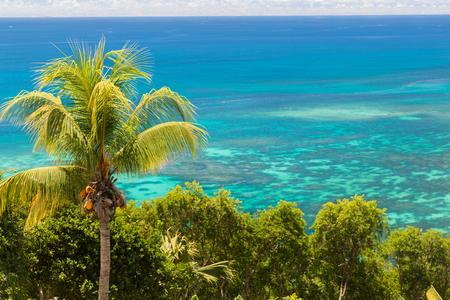 reis, landschap en aardconcept - bekijk aan Indische Oceaan van eiland met palm