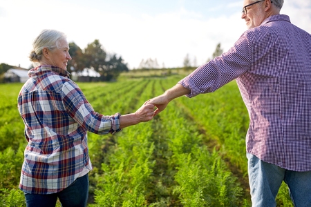 happy senior couple holding hands at summer farm