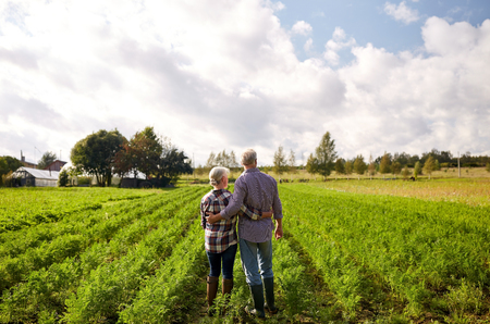 farming, gardening, agriculture and people concept - happy senior couple at summer farm Standard-Bild