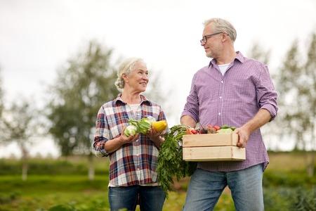 landbouw, tuinieren, landbouw, oogsten en mensen concept - senior paar met een doos met groenten op de boerderij