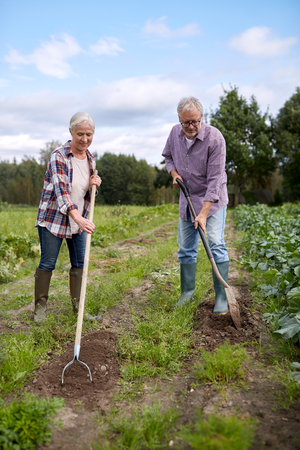 senior couple with shovels at garden or farm Stock Photo