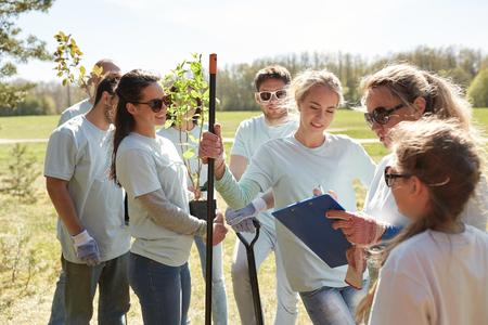 group of volunteers with tree seedlings in park photo