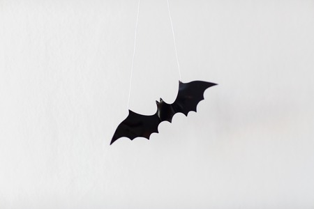 halloween decoration of bat over white background