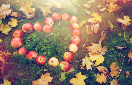 apples in heart shape and autumn leaves on grass