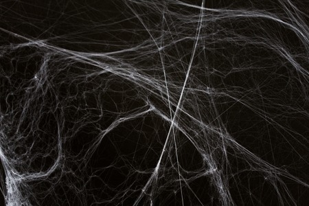 halloween decoration of spider web over black