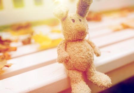 toy rabbit on bench in autumn park Stock Photo