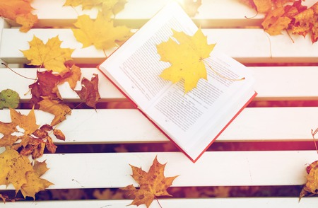 season, education and literature concept - open book on bench in autumn park Imagens
