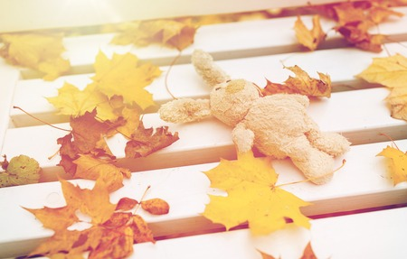 season, childhood and loneliness concept - lonely toy rabbit on bench in autumn park Stock Photo