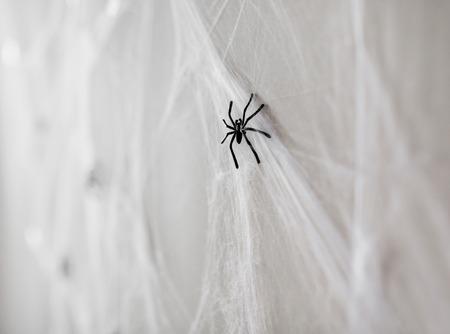 Halloween-decoratie van zwarte stuk speelgoed spinnen op Web