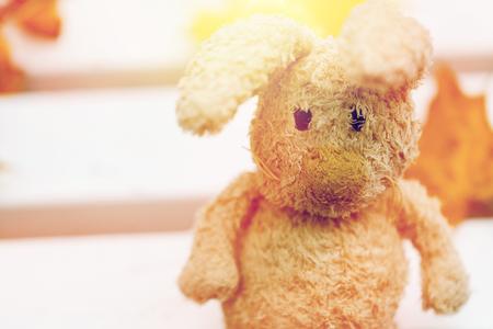 close up of toy rabbit on bench in autumn park 版權商用圖片