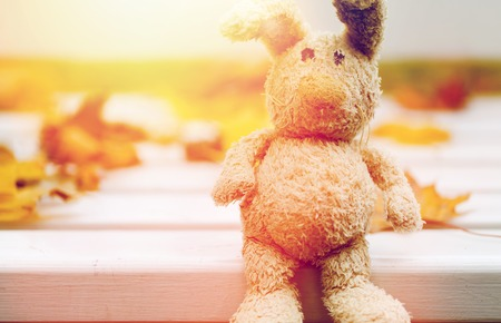 close up of toy rabbit on bench in autumn park Stock Photo