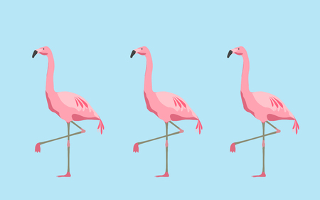 illustration, fauna and birds concept - pink flamingos over blue background