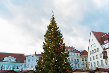 christmas tree at old town hall square in tallinn 版權商用圖片