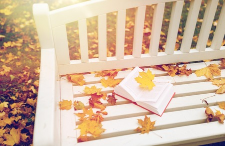 open book on bench in autumn park